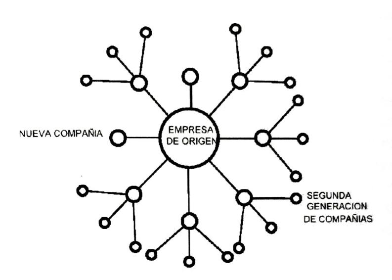 La organización starburst